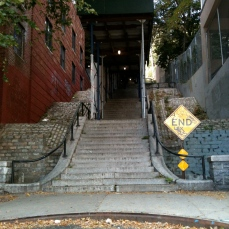 Step street: 238th Street (in Pgh they are mostly called city steps! Also known as paper streets, look it up if you are feeling nerdy