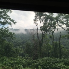 View from the Amtrak on the way to Johnstown from Pittsburgh.