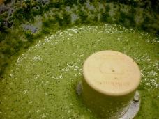 Arugula Pesto