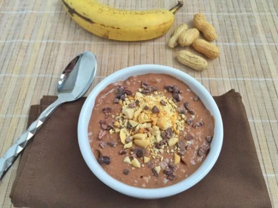 Banana-Fudge-Vegan-Ice-Cream-e1454809912675